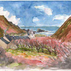 Welcombe Valley, North Devon.
